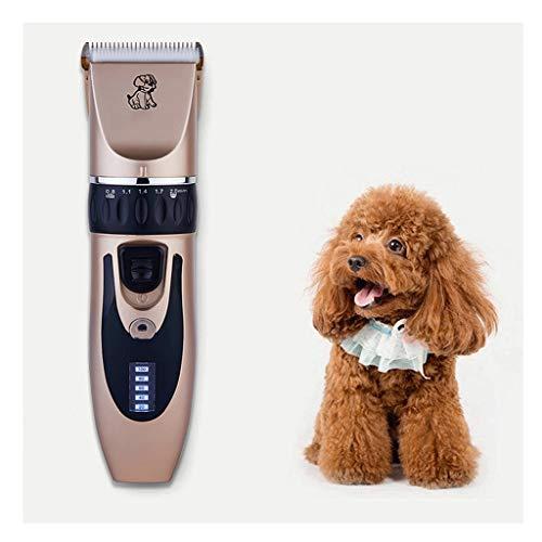 ZJGZDCP Pet Hair Trimmer eléctrico Perros Piel Clipper Set, Ruido Bajo Herramienta Peluquerías y estética Recargable, Kit de Corte de Pelo, Pelo Trimmer, Clippers Que preparan el Kit (Color: Oro)