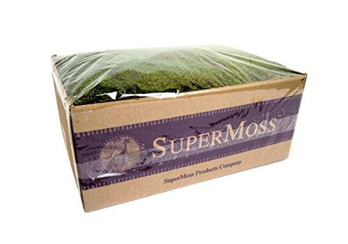 SuperMoss (21598) Sheet Moss Preserved, Fresh Green Wet Use (20-24 sq. ft. Approx 3.5lbs)