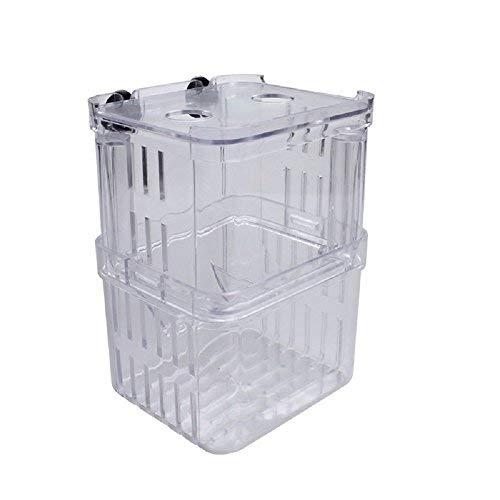 EFORCAR 1 stücke Fischzucht Boxen Doppel Guppies Schlüpfen Inkubator Isolation Acryl Mini Aquarium Tanks Durable (Klein)