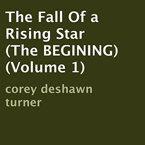 The Fall of a Rising Star audiobook cover art