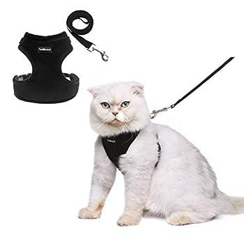 Scenereal Co. Lot de harnais réglable avec laisse, empêchant au chat de s'échapper - Pour chat, chaton, chiot, chiens de petite taille