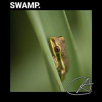 Frogs ASMR Sounds