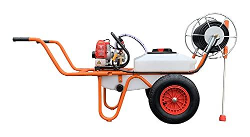 Bricoferr BF223401-2 Carretilla Sulfatadora Motor a Gasolina 2 Tiempos y Capacidad 50...