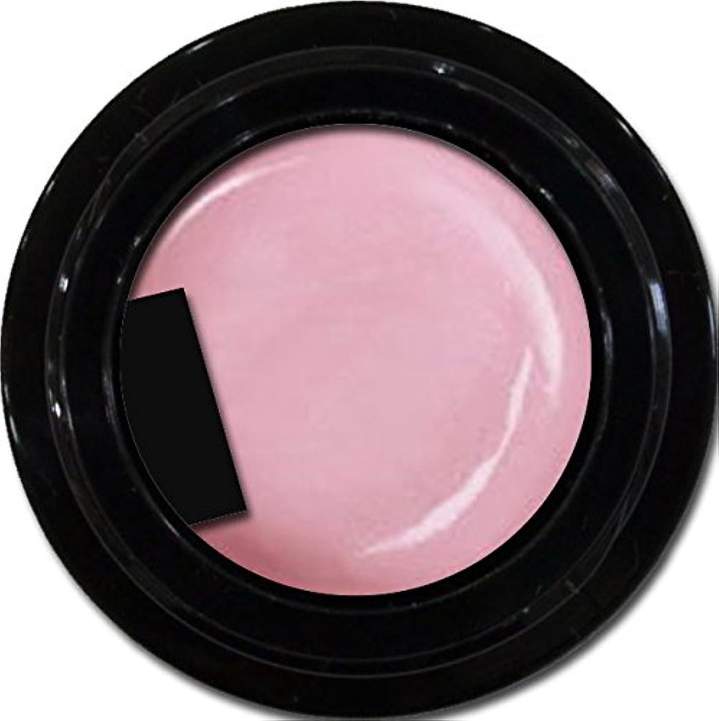 ペニー可聴夫婦カラージェル enchant color gel P501 Lilac 3g/ パールカラーカラー P501ライラック 3グラム