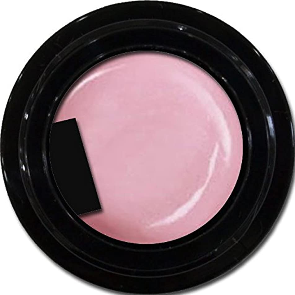 賠償直径放置カラージェル enchant color gel P501 Lilac 3g/ パールカラーカラー P501ライラック 3グラム