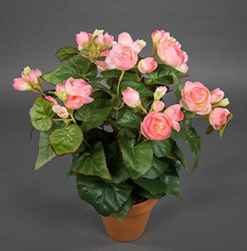 Seidenblumen Roß Begonie 38cm rosa im Topf LM Kunstpflanzen Kunstblumen künstliche Blumen Pflanzen Begonienbusch