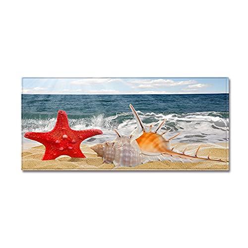 OPLJ Alfombra de Piso de impresión 3D de Paisaje de Estrellas de mar y Conchas de Playa, Alfombra de Puerta de Bienvenida para decoración...