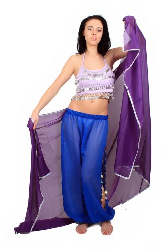 The Turkish Emporium Voile RECTANGLE danse orientale DANSE DU VENTRE VIOLET ARGENT