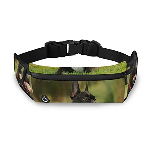 Cocoa trade Fanny Pack French Bulldog Popularity Running Belt fits 6 7Plus 8 X Tactical Waist Bag for Cycling Outdoor Sports Snowboard,Hiking,Mountaineering