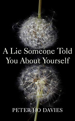 A Lie Someone Told You About Yourself by [Peter Ho Davies]