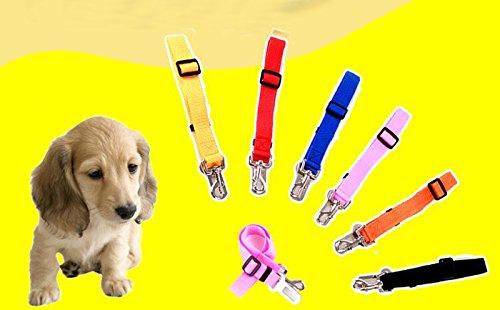 nikgic Nylon perro Cintur/ón de Seguridad Coche para Perros adaptador auto Pet ajustable Cintur/ón de Seguridad Seguridad Vajilla