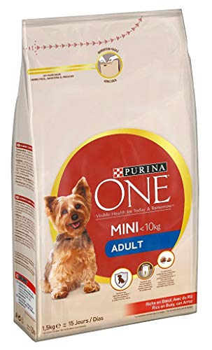 PURINA ONE Hundetrocken Adult Mini 1
