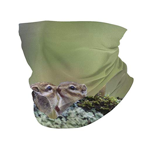 Variety Head Scarf Fashion Face Mask Asian Chipmunk Kushiro Hokkaido Japan Rodent Sun-Proof Fashion Bandana Headwear Face Towel for Men and Women