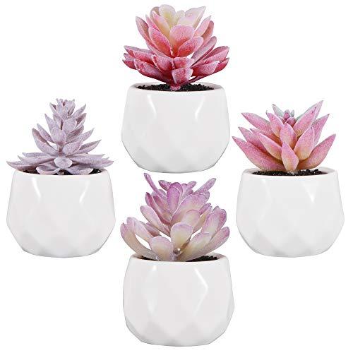 Zalava 4 Stück Künstliche Sukkulenten Pflanzen, Künstliche Pflanzen mit Topf Kunstpflanze klein für Tisch Haus Balkon Büro Deko