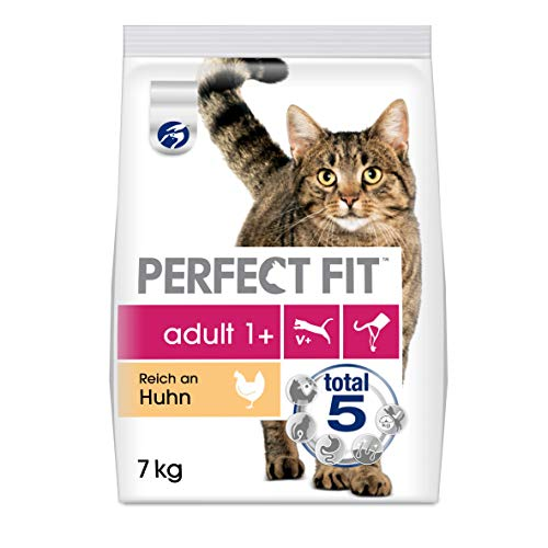 Perfect Fit -   Adult 1+ -