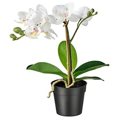 IKEA FEJKA - Planta artificial en maceta, para hermoso hogar, color blanco orquídea, 9 cm