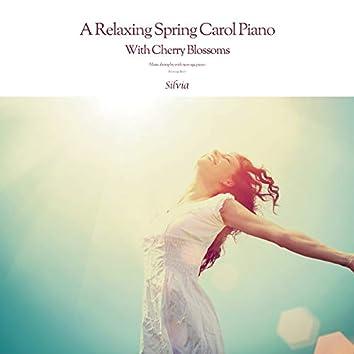 벚꽃 날리는 편안한 봄캐롤 피아노 A Relaxing Spring Carol Piano With Cherry Blossoms