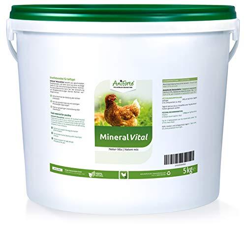 AniForte Mineral Vital Natur-Mix 5 kg Muschelgrit für Hühner – Muschelschalenschrot, Grit unterstützt die Knochen- & Eibildung, bei Mangelerscheinungen, reich an Mineralien, Naturprodukt
