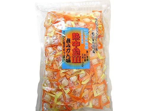 井関食品 熱中飴III 夏みかん味 1kg