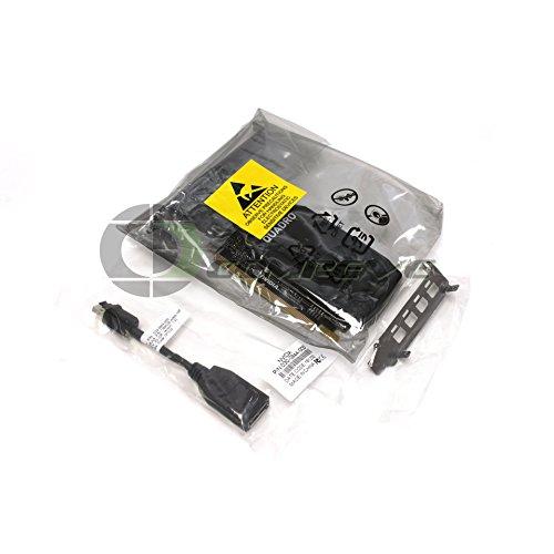 NVIDIA Quadro P1000 Pascal LP Grafikkarte (4 GB, GDDR5, PCI-E, 3.0x16, 4x mDP)