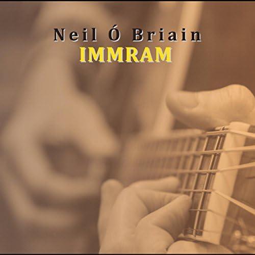 Neil Ó Briain