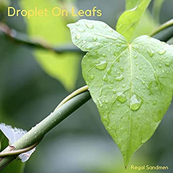 Droplet On Leafs
