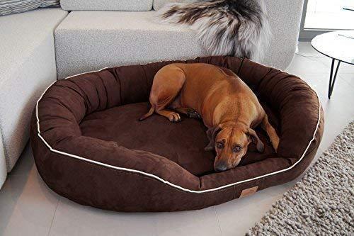 tierlando® Nonplusultra Marlon orthopädisches Hundebett mit Visco Plus Matratze in Velours! Soft-Lounge! Gr. M L XXL XXXL | 85 cm bis 220 cm (L 100 x 85 cm, 02| Graphit)