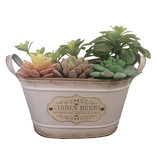 Ashley ZC Vintage Style Metal Planters,Rustic Country Style Iron Flower Pot - Oval Garden Succulent Container with Handles - Pink