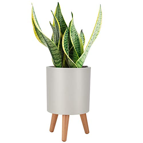 Plant Pots, LEEFENGQI Self-Watering Nursery Pots with Stand for Flowers Snake...