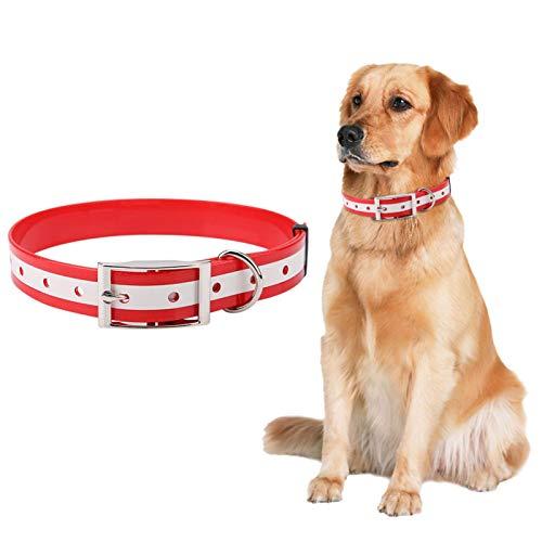EVTSCAN Collar de Perro LED Recargable por USB - Collares de Perro iluminados Que Brillan en la Oscuridad, Mantienen a Sus Mascotas seguras Collares de Seguridad Nocturna(Rojo)