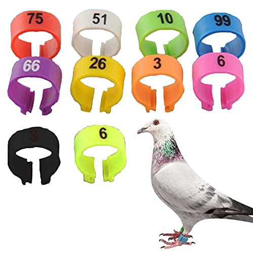 TRLREQ 1-100 Number Chicken Bird Leg Rings,8mm Chicken Leg Rings Numbered Poultry Leg Band, for Chicks Bantam Finch Dove Lovebird Quail Small Poultry(Mixed Colors)