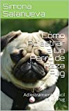 Cómo Adiestrar a Un Perro de Raza Pug : Adiestramiento Fácil de un Pug