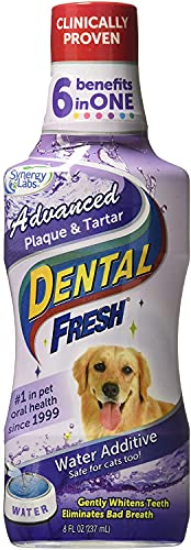 Dental Fresh Advanced Plaque and Tartar Water...