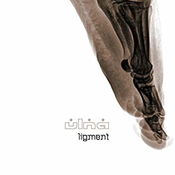 Ligment