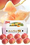 ふみこ農園 果物 ギフト 桃 和歌山県産あら川の桃 産地直送 みずみずしいジューシーな旬の美味しさ (約2kg 8玉) hatiki-momo