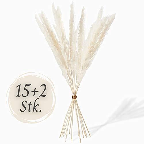 MIRAMAY® Pampasgras weiß getrocknet & fluffig - 15+2 STK. - Trockenblumen - Natürlich pflegeleicht & jahrelang haltbar - Stilvolle Deko - Boho, Skandi, Japandi, Vintage