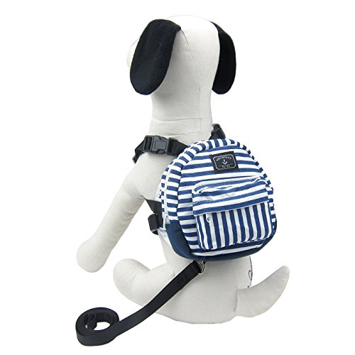 Alfie Pet - Fortune Backpack Harness with Leash Set - Color: Blue, Size: Small