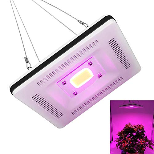 XLQF Waterproof Full Spectrum LED Grow Light, Best Grow Lights for Indoor Plants, 300W CFL & HPS & CMH Grow Lights Equivalent, for Flowering in Small Grow Tent