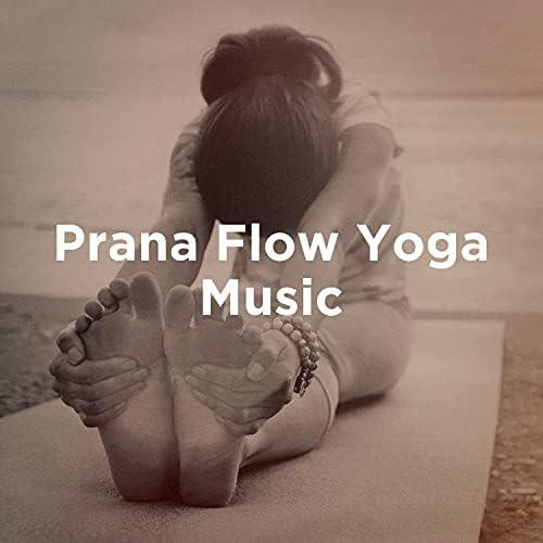 Positive Thinking: Music To Develop A Complete Meditation Mindset For Yoga, Deep Sleep, Musica de Yoga & Yoga Tribe
