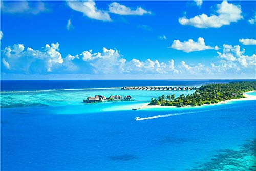 HCYEFG Giocattoli 1000 Pezzi Fai da Te Puzzle Isola delle Maldive Puzzle per Adulti Puzzle per Bambini