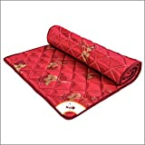 Coir on Slim Foldable Travel Mattress- 72X48X1' (inch) - Maroon