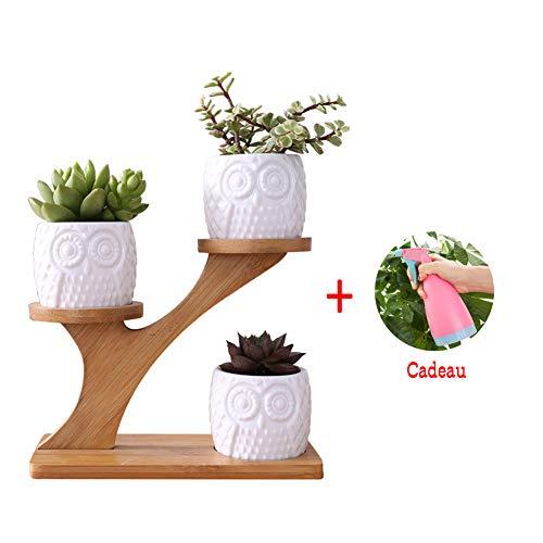 Soddyenergy Semplice Vaso per Piante grasse Bianco, in Ceramica, Motivo Gufo, a Forma di Albero in bambù, Set di vasi