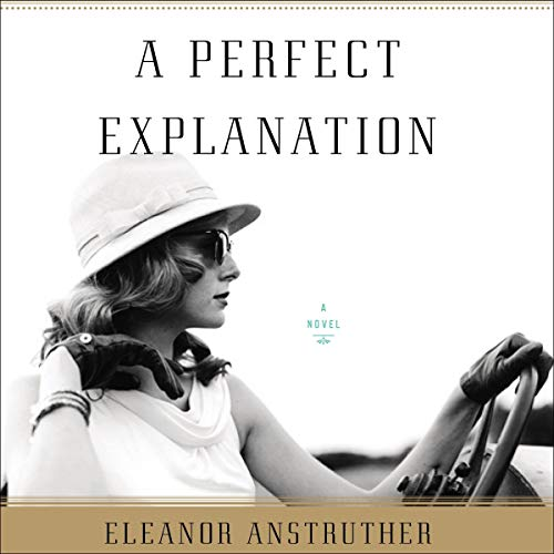 A Perfect Explanation cover art