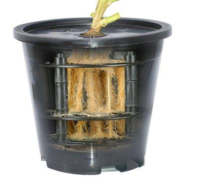 aeroponik systems Aero Grow 19 Cultivo de plantas, entorno aéreo