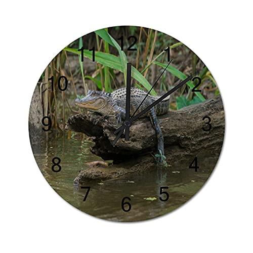 Reloj de Pared ,Pantano de Louisiana Honey Island B, Relojes de Pared Digitales de Madera Que no Hacen tictac, Funcionan con Pilas, decoración Sala de Estar, Dormitorio, Aula, Oficina (10 Pulgadas).