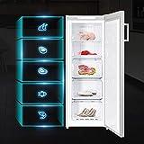 CHiQ FSD166NE4 Tiefkühlschrank 166 L | Gefrierschrank mit Dynamic Cooling-Funktion | LED-Beleuchtung | Wechselbarer Türanschlag | Schwarzer Edelstahl | A+| Sehr leise 42db - 5