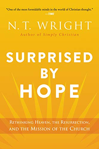 Surprised by Hope: Rethinking Heave…
