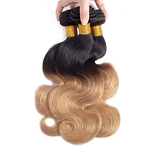 1b 27 hair _image2