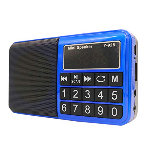 Portable Pocket FM/AM/SW Radio, HePesTer H-R928 Handy Radio with Headset Output/AUX Input/MP3/External Speaker/16GB TF Card/16GB USB, Powered by Lithium Battery (Blue)