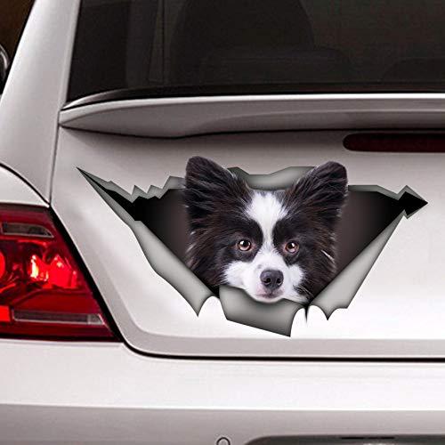 Yohoba Schwarz und Weiß Pomeranian Aufkleber Autoaufkleber Pomeranian Car Decal